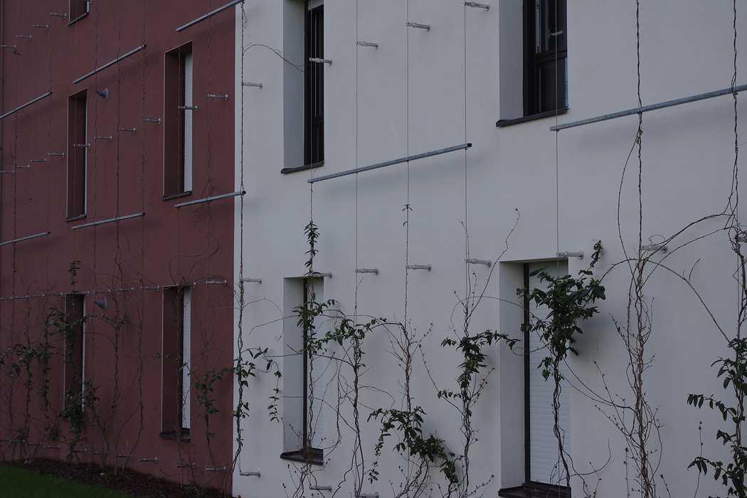 Support de mur végétal 0